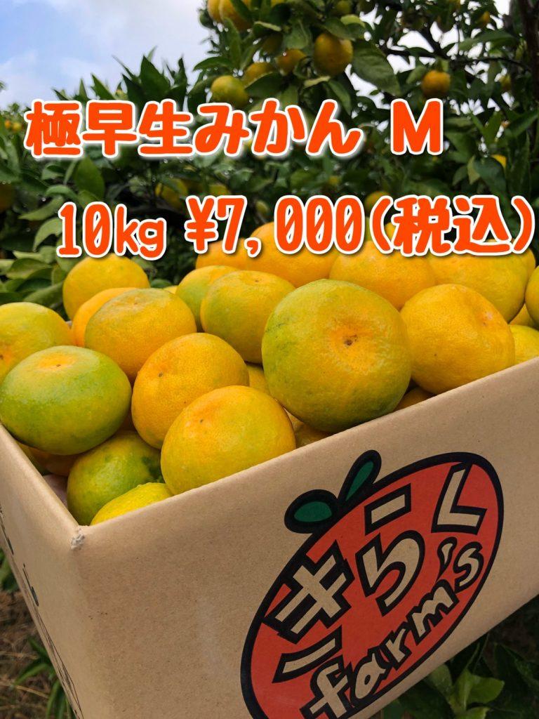 gift-10-goku-m