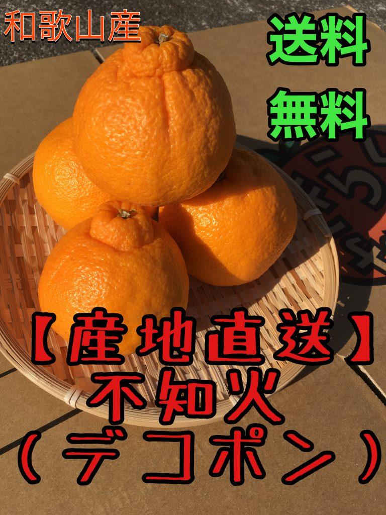 home-siranui-3